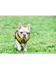 Mięciutkie oddychające i ocieplane szelki THERMAL SOFT Puppia