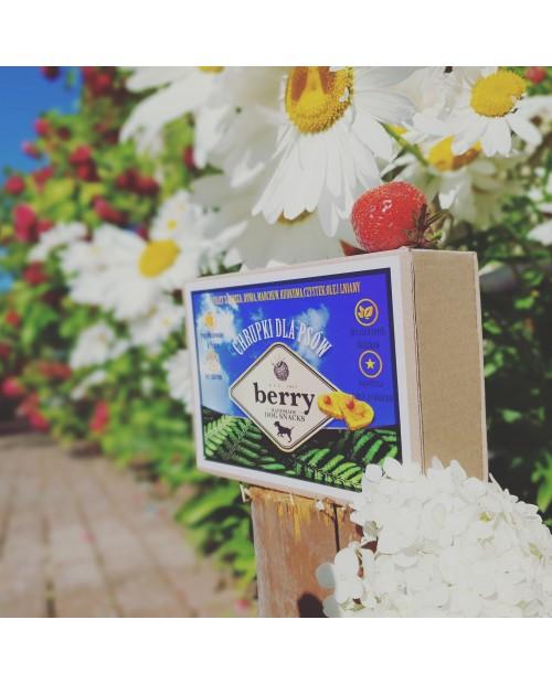 Berry Dog Snacks Dorsz Bałtycki