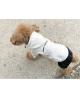 Bluza dla Psa Puppy Angel śliwkowa
