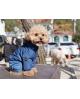 Kombinezon zimowy z logo na łapce Puppy Angel MAGAGIO beż