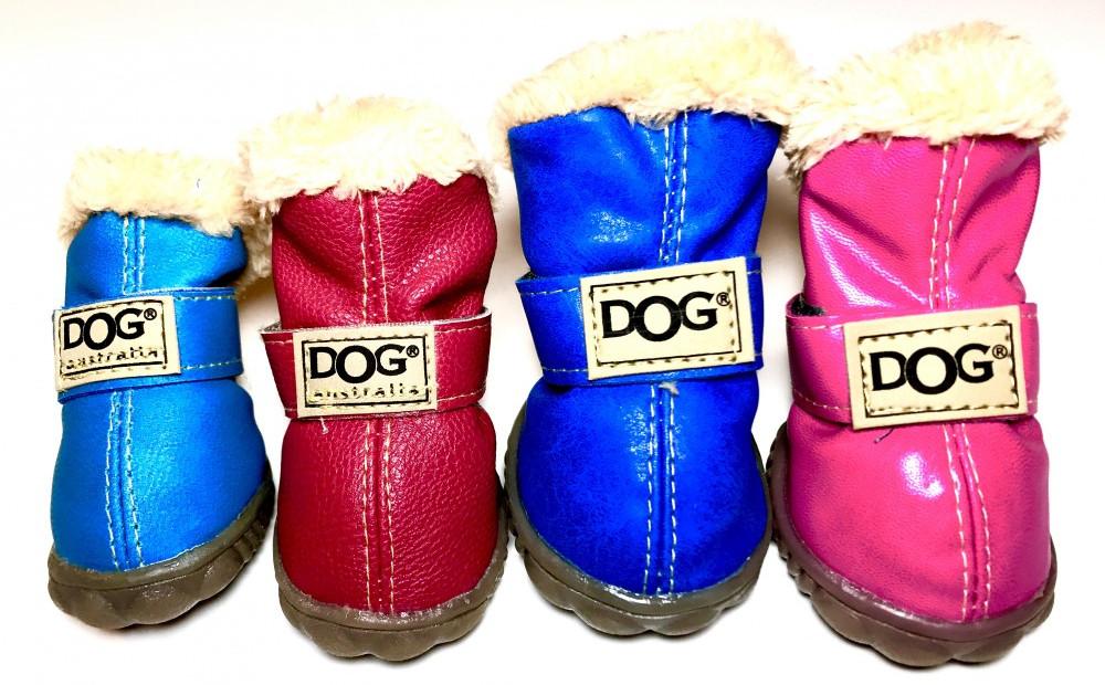 Buty dla psów